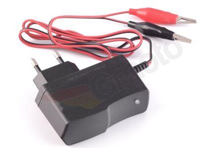 Ładowarka do akumulatorów kwasowo - żelowych 6V